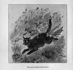 The poor animal broke loose, Phantastes Chapter 3