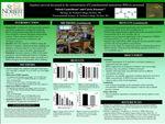 Daphnia survival decreased as the concentration of Cyanobacterial neurotoxin BMAA increased