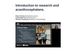 Introduction to research and acanthocephalans