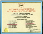 National Association of Intercollegiate Athletic Awards